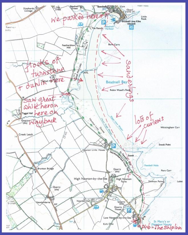 Beadnell map