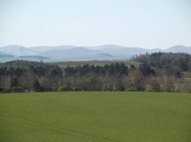 looking towards Cheviots