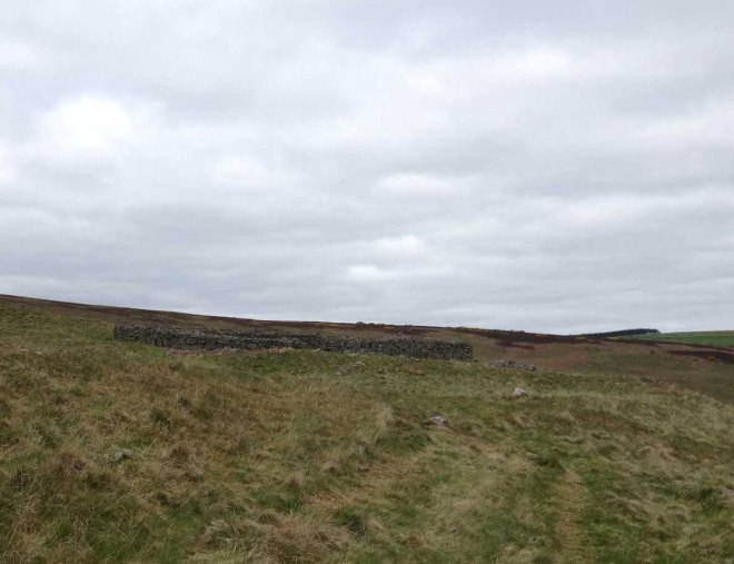Approaching Edin's Hall Broch
