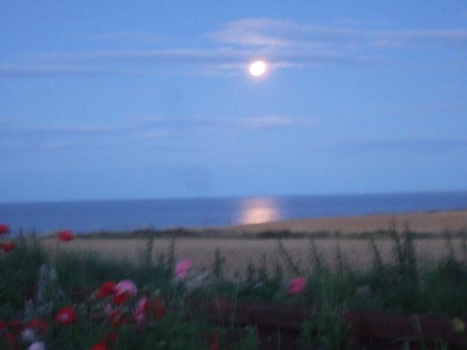 deep blue of moonlight