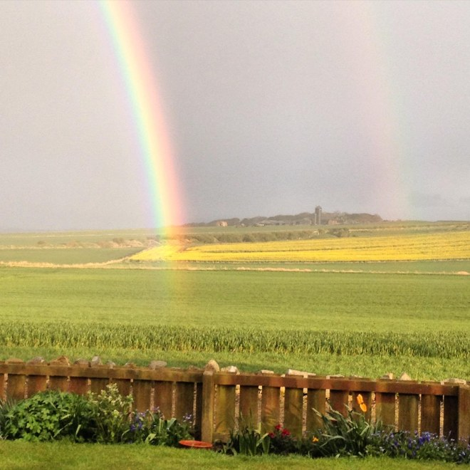 field of the cloth of gold and double rainbow
