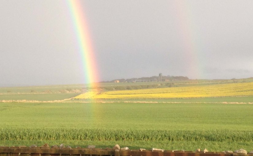 Field of the Cloth ofGold