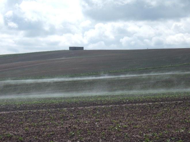 steaming brown fields