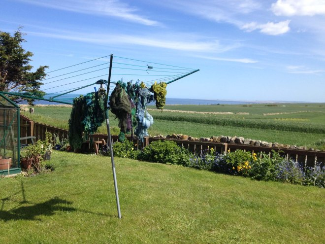 greeny fleece on washing line