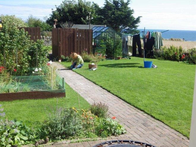 Katherine weeding the garden path
