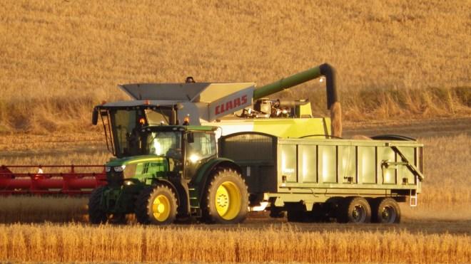 Transfering grain