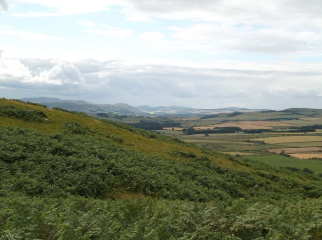 View over bracken to the Cheviots