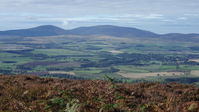 Cheviot hills from the top