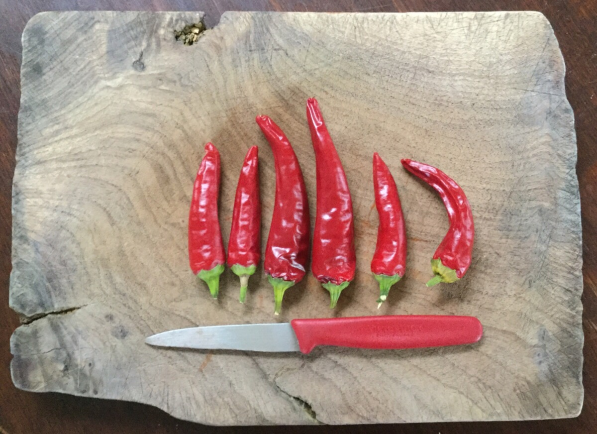 Red chilli peppers on the chopping board