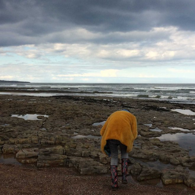 absorbed in searching for sea treasure