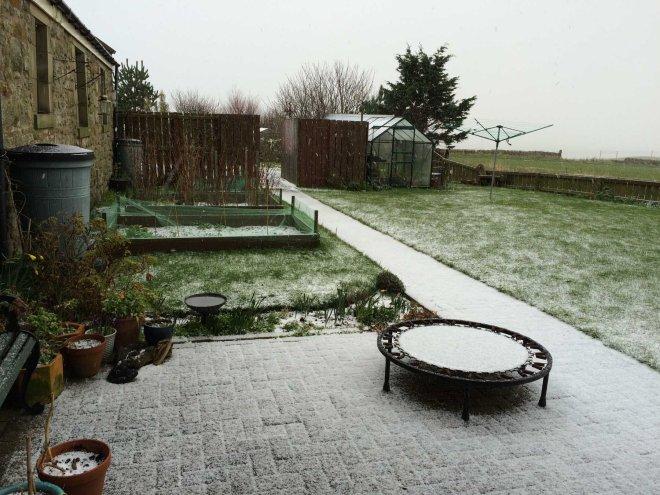 snow at Seaview
