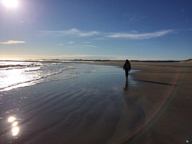 Walking along Beadnell bay