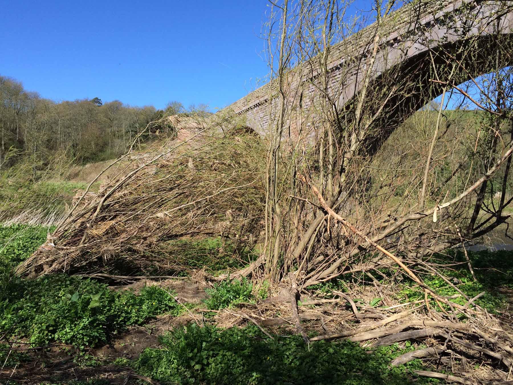 Detritus under bridge