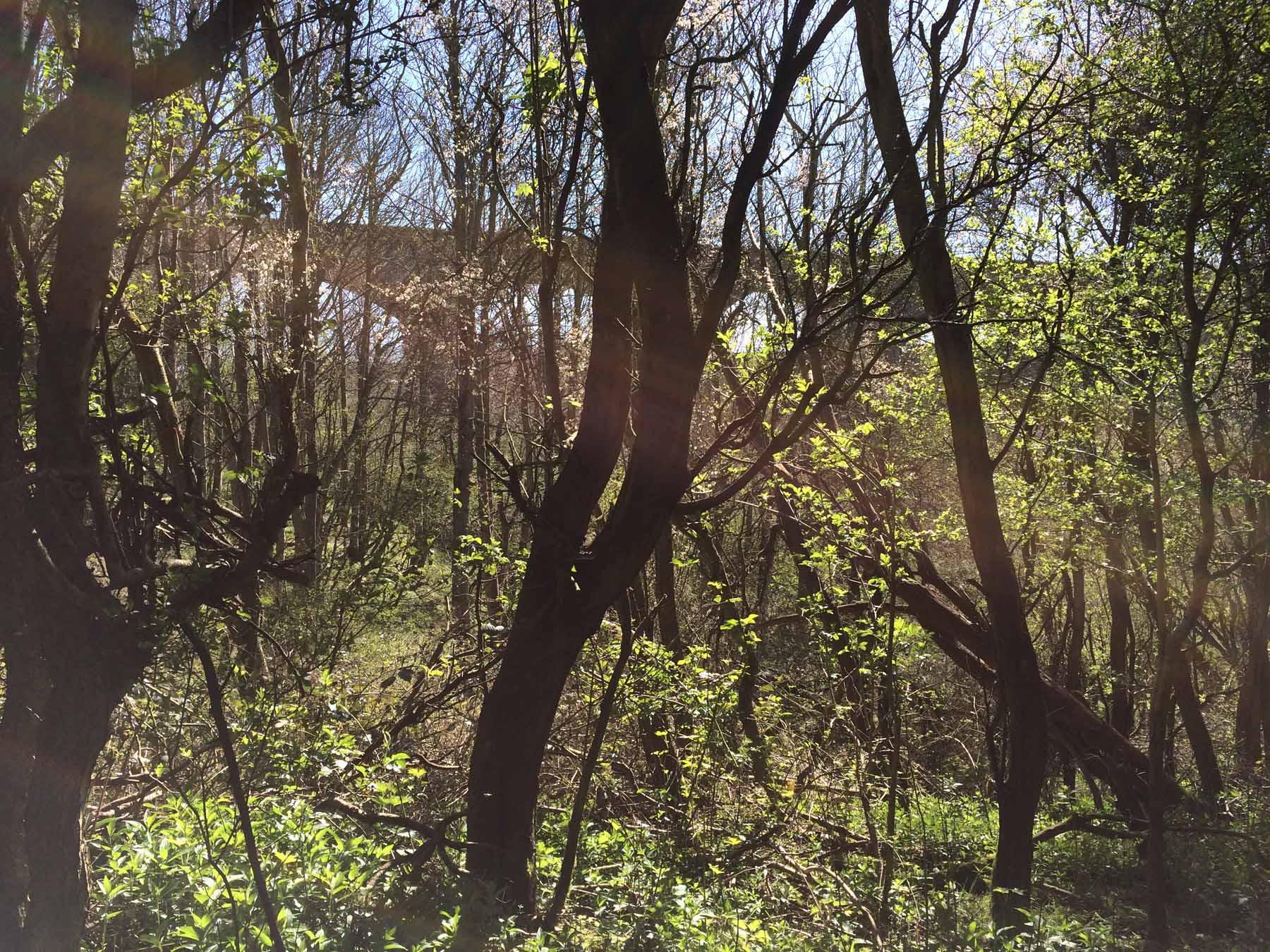 first glimpse of railway bridge