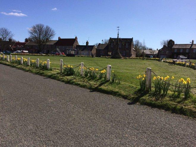 sunny Norham village green