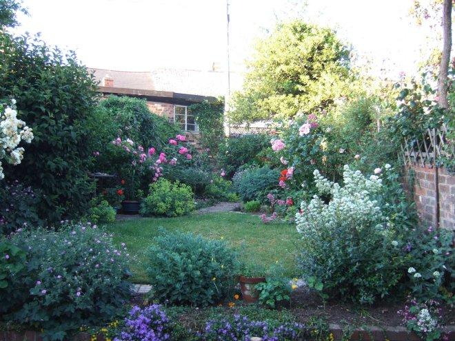 Devon garden