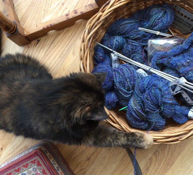 somebody's discovered my knitting