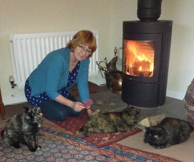 K grooming cats in front of fire