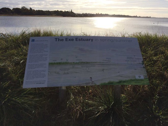 information-board-at-exe-estuary