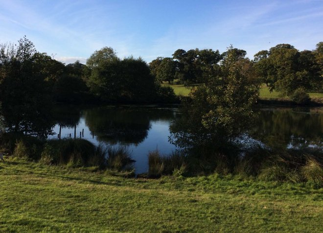 lakes-in-shobrooke-park