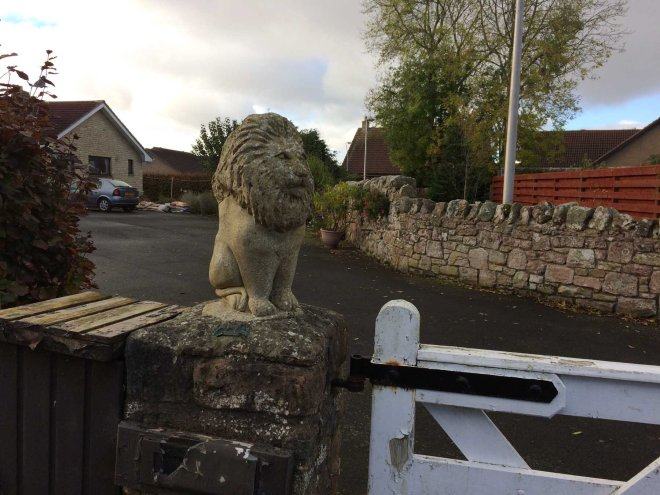 mini-paxton-lion-outside-this-house