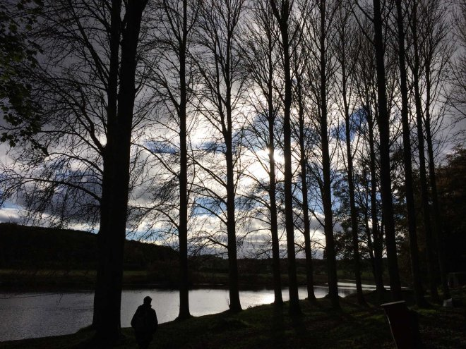 river-tweed-glimpsed-through-the-trees