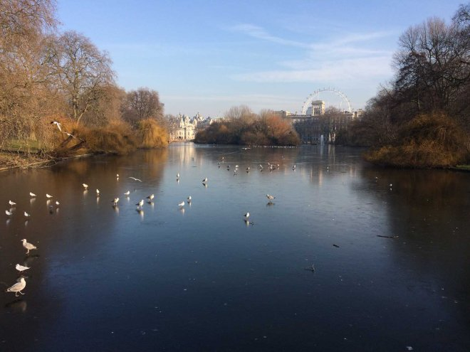 icy-waters-at-st-james-park