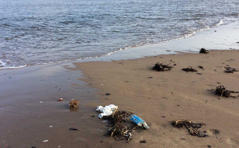 A lament for litter…