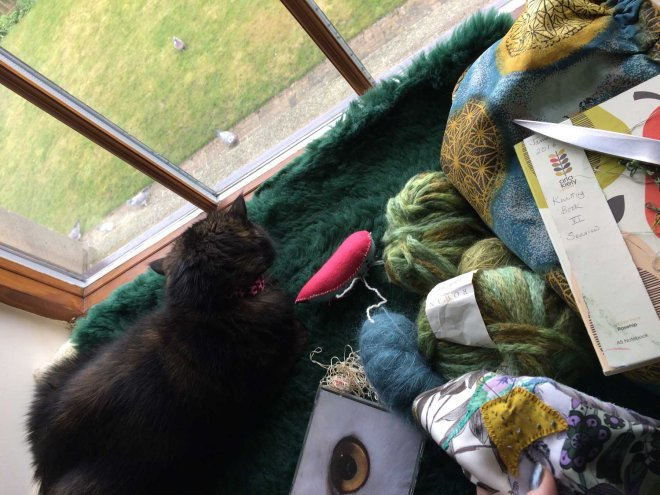 winter stitching with cat