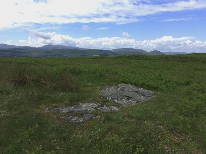 rock art with the cheviots