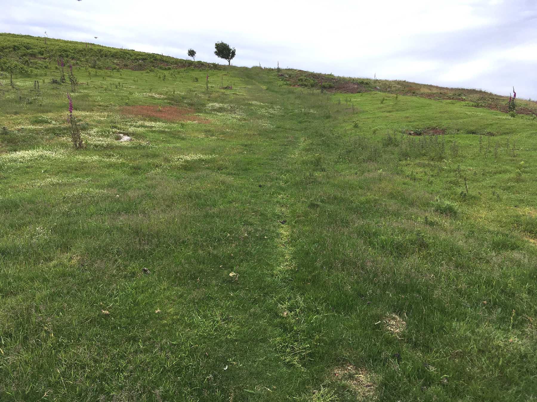track leading invitingly upwards
