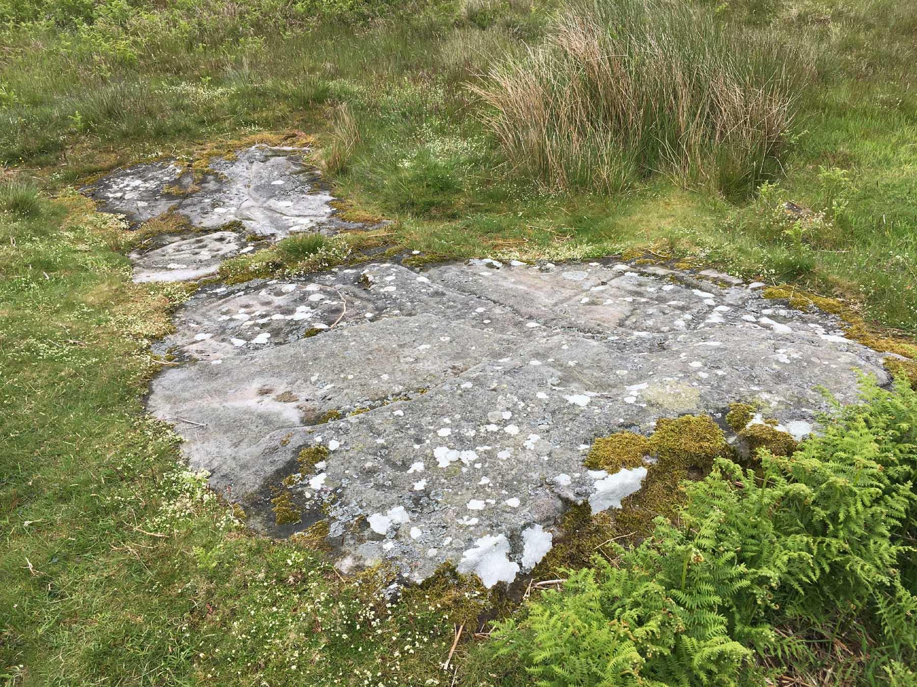 unusual rock art on Dod Law