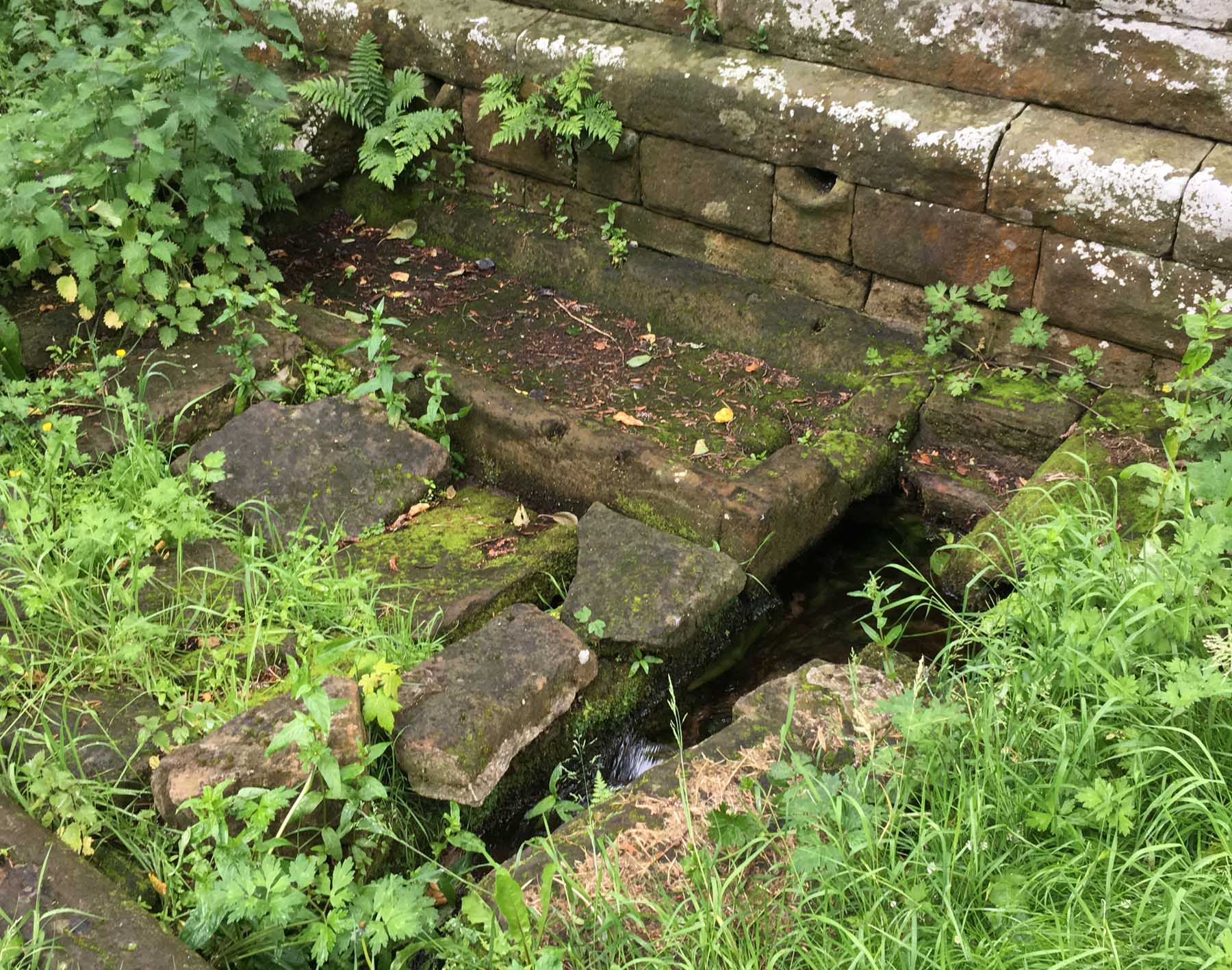 water trickling out of holy well